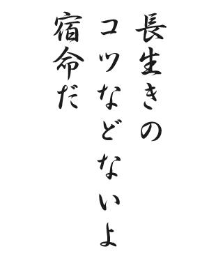 川柳HP49