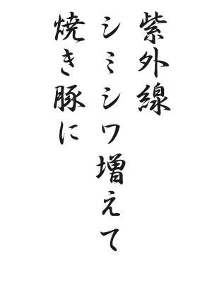 川柳HP60