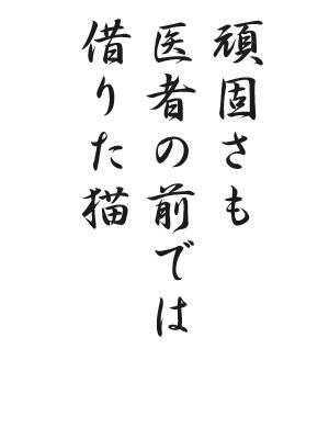 川柳 HP98